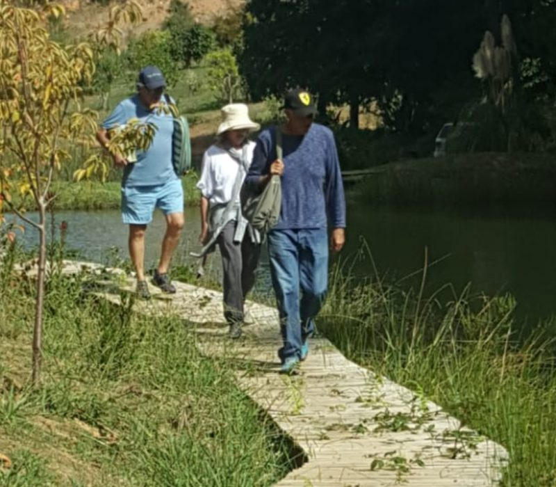 Elgin Leisure Tours_Elgin Valley_Farm walks and picnics and wine tastings_Oneiric Wines